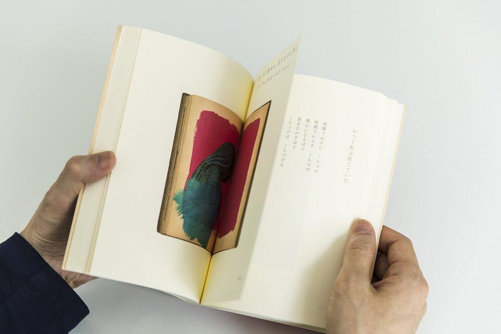 かのひと 超訳 世界恋愛詩集, 菅原敏, 久保田沙耶