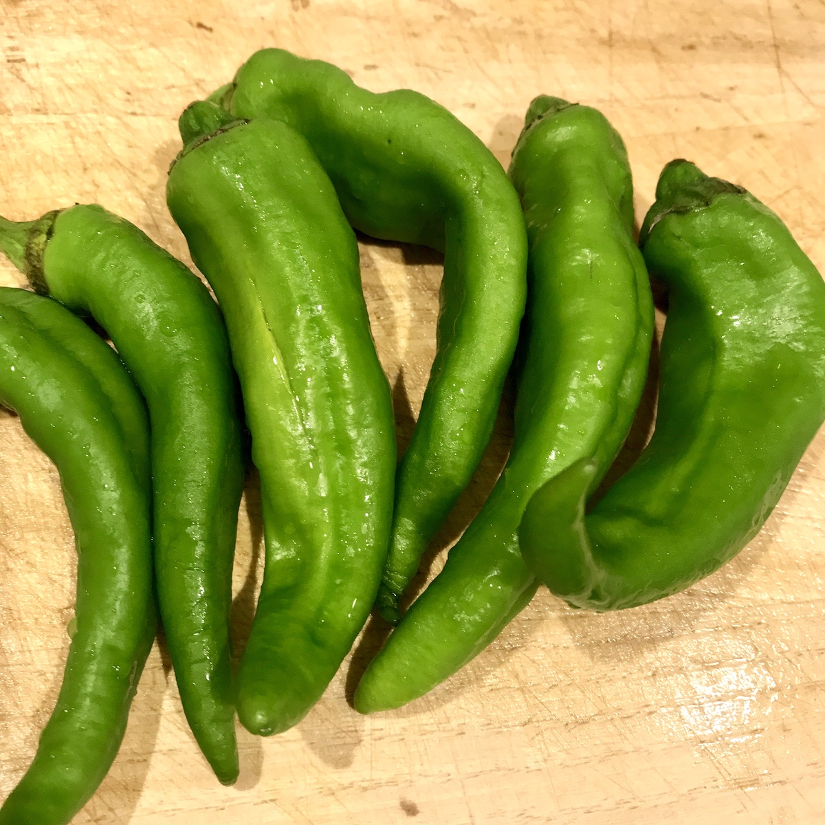 クボタマサヒコ クボタ食堂 レシピ