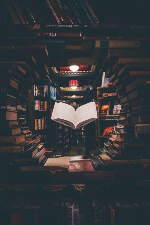 おもしろい小説を読みたい人のための、ブックガイドのブックガイド5冊