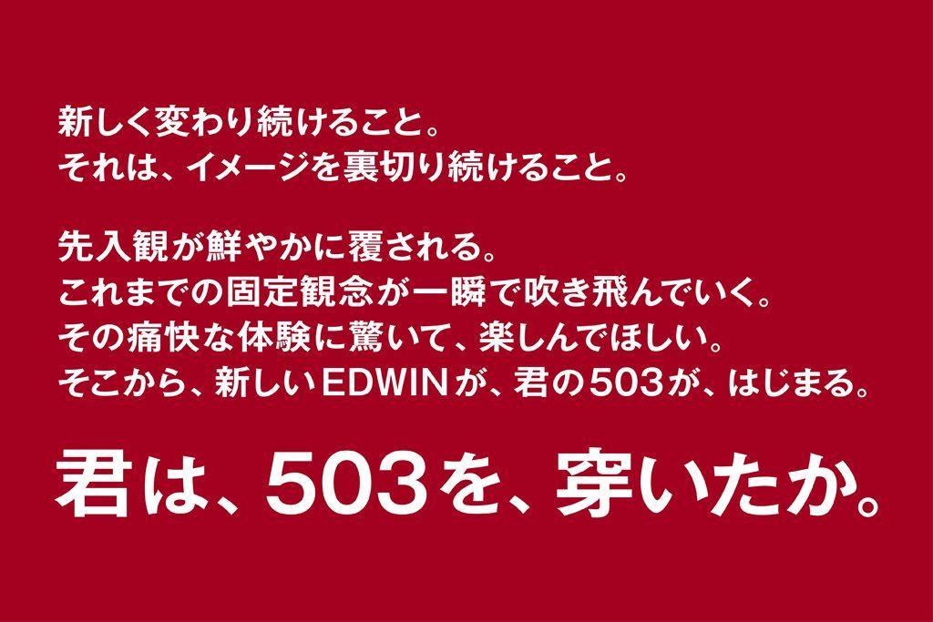 EDWIN エドウイン 503