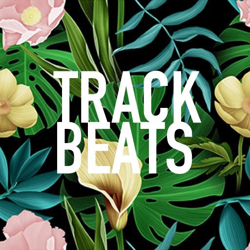 "Track Beats 始動。ミュージシャンが ""楽曲"" をガチ解説するYoutube CH"